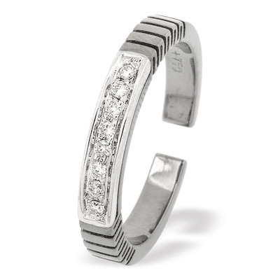 18K White Gold Titanium Ring